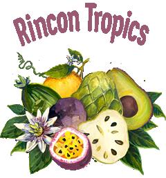 Rincon Tropics