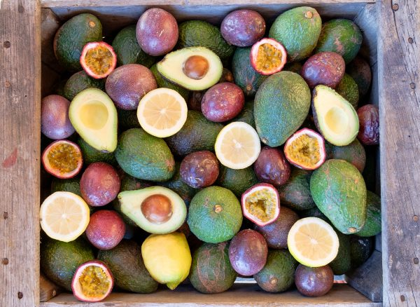 Rincon Tropics - Seasonal Mixed Fruit Box